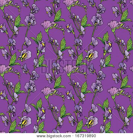 Seamless pattern with Realistic graphic flowers on violet backdrop - hand drawn background.