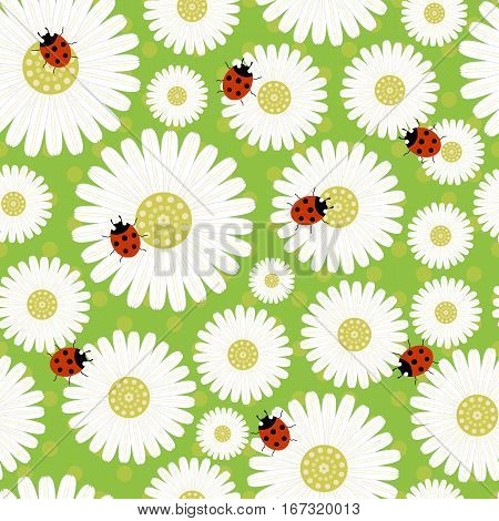 seamless pattern with daisies-vector illustration. Daisy print gentle. Ladybugs on the flowers, delicate and cute ornament.