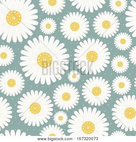 seamless pattern with daisies-vector illustration. Daisy print gentle.