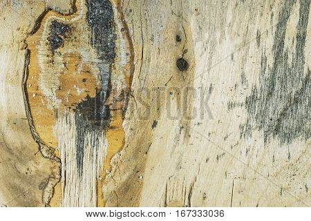 Weathered Decorative