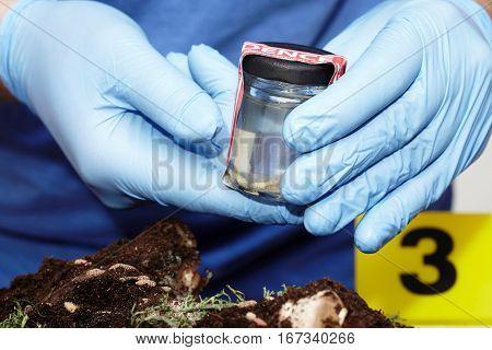 Packing of fly larva on crime scene by criminologist