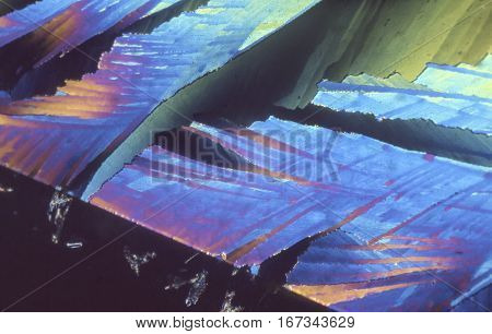 Polarized microscope crystals using low powered microscope