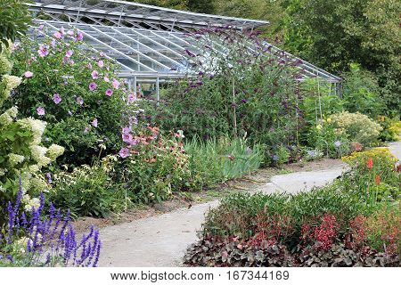 The greenhouse and blooming flowers in the garden