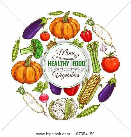 Organic banner of vegetable food diet. Healthy eggplant and vegetarian corn, harvest peas and pumpkin, farm radish and daikon, tomato and pepper, cauliflower and asparagus, Can be used for farm and garden, market showcase or counter theme