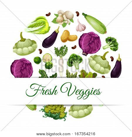 Fresh vegetable food banner. Pattypan squash and broccoli, asparagus and daikon, mushroom and garlic, broad beans and beets, red cabbage and zucchini or courgette, potato and eggplant. Health vegetarian nutrition theme