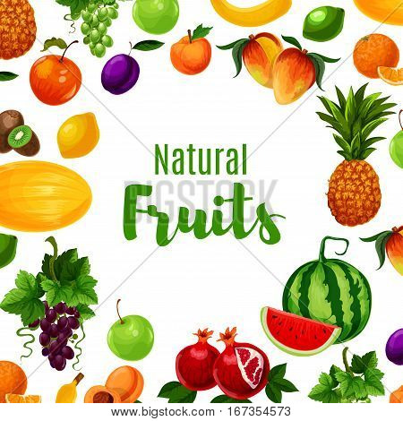 Vitamin food or fruit poster design. Fresh kiwi and citrus lemon, pineapple and apple, apricot and banana, pomegranate or garnet, grapes and peach, orange and melon, mango and watermelon. Vegetarian shop or store placard, diet menu