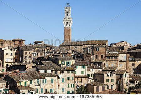 Tower of Siena town hall. Siena Tuscany Italy