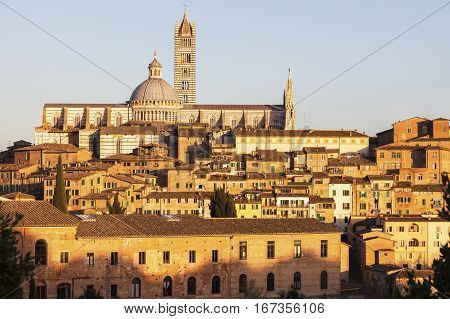 Siena Cathedral in Siena at sunset. Siena Tuscany Italy.