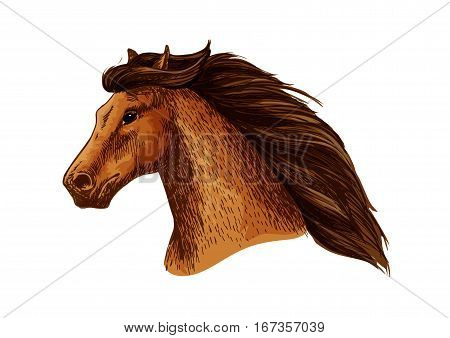 Horse or stallion, mare head with thick mane. Domestic or farm broodmare sign or thoroughbred racehorse for exhibition. Equestrian or equine sport club, purebred arabian or american wild mustang, mascot or veterinary theme