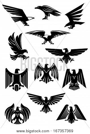 Heraldic eagle and hawk, falcon badge. Aquila with wide opened wing tattoo, bird as insignia of power and freedom, american patriotism symbol. Retro heraldry or historical culture, military or war theme