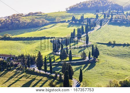 Tuscany landscape - curvy road on the hill. Tuscany Italy.