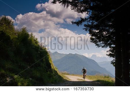 Lagorai Mountain. Trentino Alto Adige. Italy, Forest Road Coldose'
