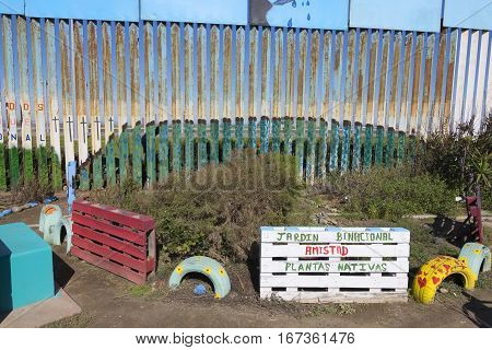 Binational garden featuring native plants is maintained on both sides of the border fence between Mexico and United States in Tijuana