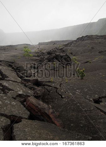 The ground has cracked along this hike through Volcanoes National Park in Hawaii.