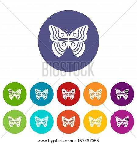 Stripped butterfly set icons in different colors isolated on white background