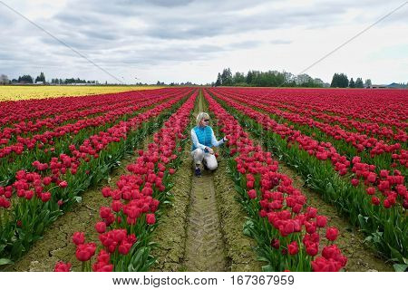 Woman in colourful tulip fields. Mount Vernon Tulip Festival. Tulip Town. Seattle. Washington. United States.