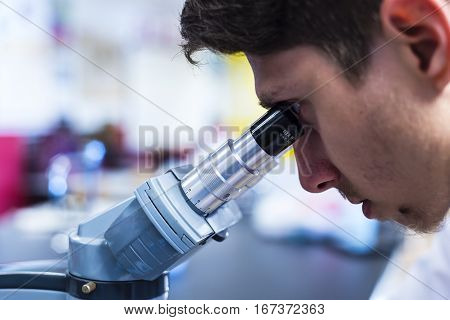 Science research. Scientist with pipette and flasks working on science research in laboratory, scientist with equipment and science experiments, Laboratory glassware containing chemical liquid, science research, science background and science concept