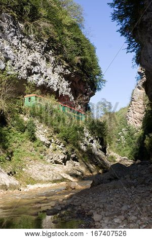Rock of the Guam gorge is forested.The Caucasus. Russia