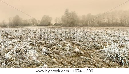Lithuanian farmstead in winter early in the morning