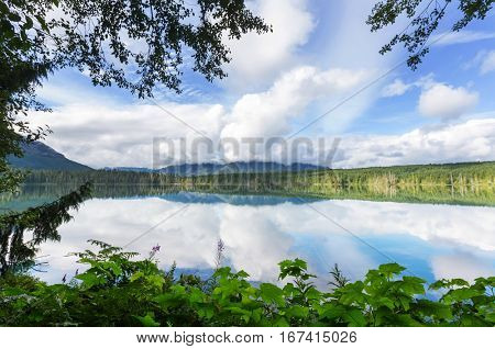 Lake in forest in Vancouver island, British Columbia, Canada