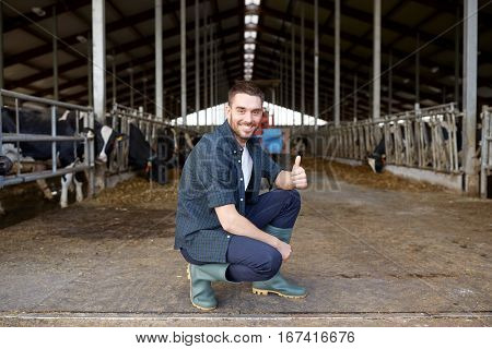 agriculture industry, farming, people and animal husbandry concept - happy smiling young man or farmer with herd of cows in cowshed on dairy farm showing thumbs up hand sign