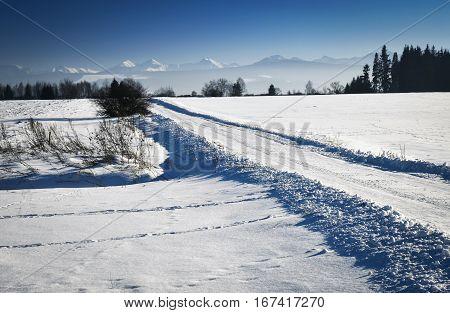 seasonal background road through winter snowy landscape