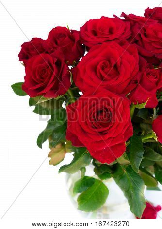 Bouquet of fresh dark red rose buds with green leaves close up isolated on white background