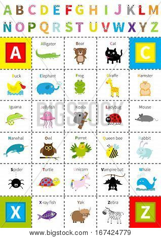 Animal zoo alphabet poster. Letters with eyes Cute cartoon character set Isolated White background Baby children education Alligator bear cat duck elephant frog giraffe hamster iguana Flat Vector