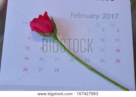 Close up calender with the date of 2017 February 14 Valentine's day and beautiful red roses on wooden board background Selective focus