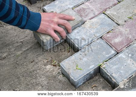 Installing paver bricks for the sidewalk pavement