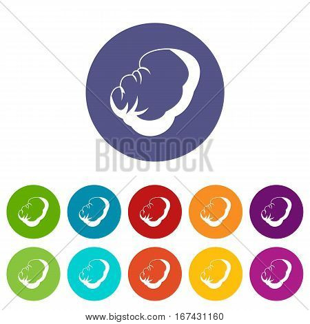 Spleen set icons in different colors isolated on white background