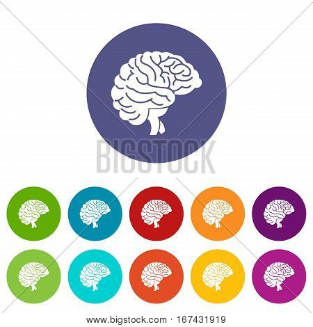 Brain set icons in different colors isolated on white background