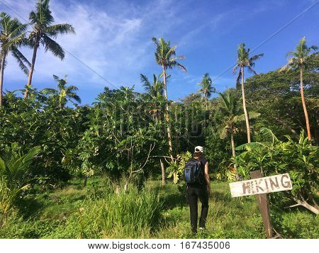 Young woman travels and hikes in tropical terrain. Female sport and travel concept. Real people copy space