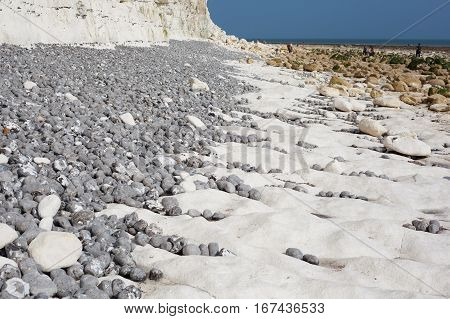 Low tide Seven Sisters National park East Sussex UK chalk coastline