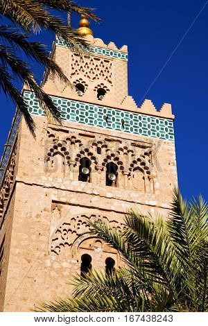 Palm   Maroc Africa  Minaret Religion And The Blue     Sky