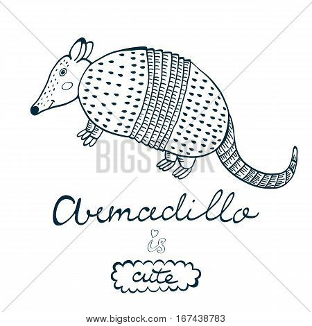 Armadillo is cute. Colorful concept card with armadillo character and hand lettering