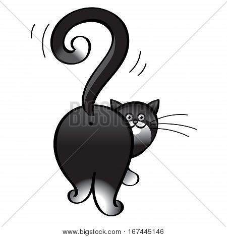Question cat - domestic animal, tail in the shape of a question mark