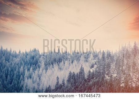 View On Sunset At Winter Mountains Tatry, Poland