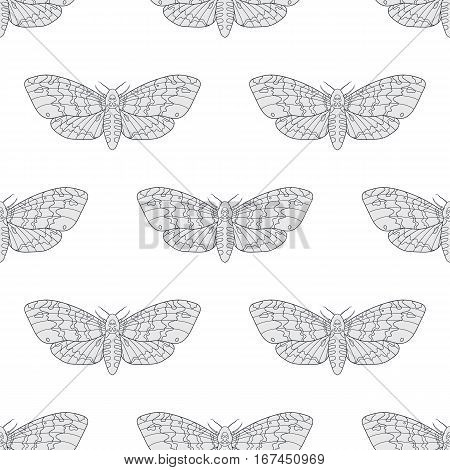 Line art dead head moths light pattern. Modern vector background