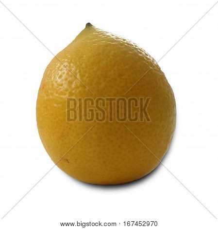 isolated one organic natural lemon on white background