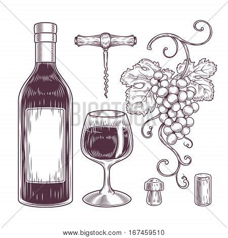 Vector collection of wine icons - bottle, glass, bunch of grapes, corkscrew, cork. Engraving style