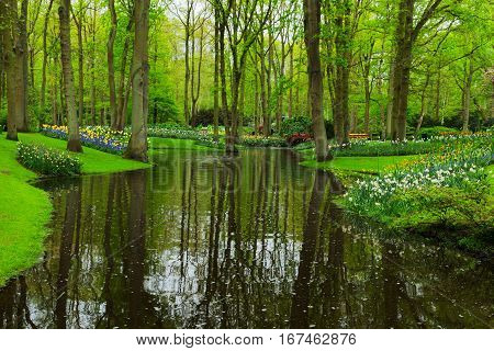 Colorful river, grass and flowerbed in dutch garden 'Keukenhof', Holland