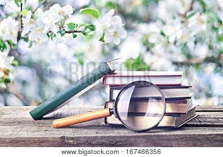 Pile Of Books And Magnifying Glass (loupe) Outdoors Spring