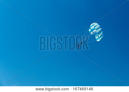 motor boat and parachute into the sea. entertainment of tourists on the beach overlooking extreme skiing in the air with a parachute for the speed boat.