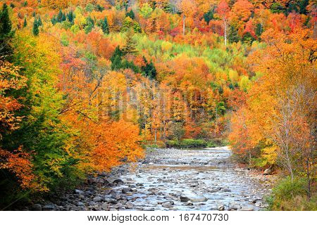 Small river flowing through Vermont fall foliage