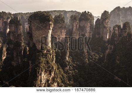 Chinese Landscape