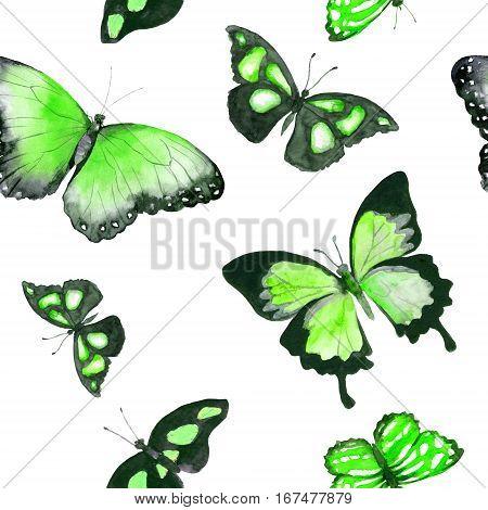 Butterflies. Seamless pattern. Watercolor with tropical butterflies