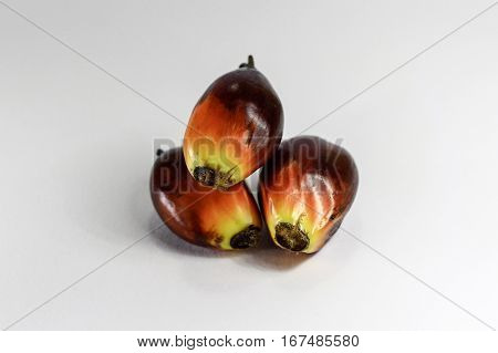 Oil palm fruits on white background.Commercial palm oil cultivation.