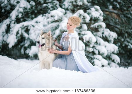 Bride in winter with dog malamute sitting in snow. Bride hugging dog and smiling.
