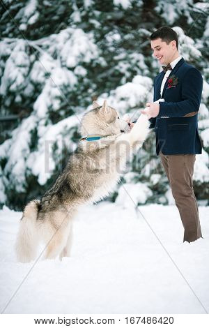 Groom in winter with dog malamute playing in snow. He keeps dog by front paws and smiling.